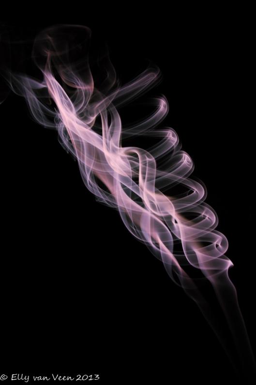 rook (2 van 3)