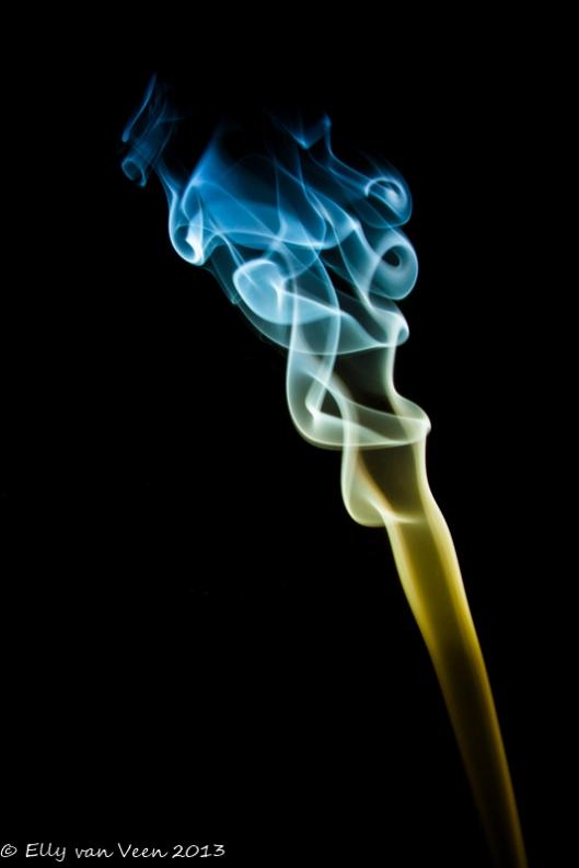 rook (3 van 3)