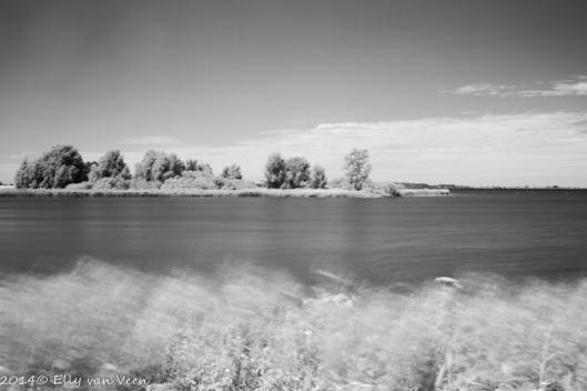 Foto, gemaakt met Infraroodfilter en omgezet naar Zwart -Wit
