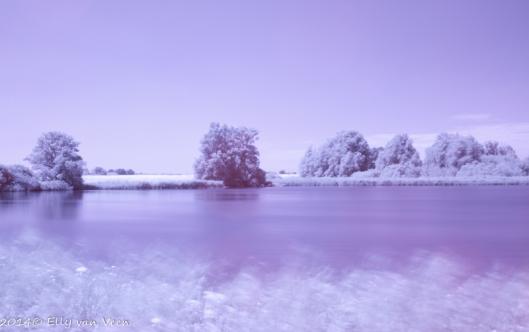 Foto met Infraroodfilter, omgezet in kleur.