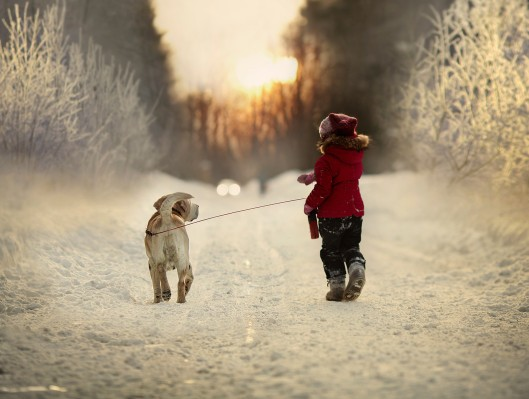 Foto van Elena Shumilova