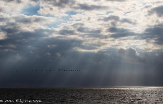 zonneharp op het IJsselmeer