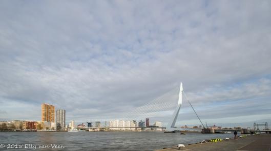 Rotterdam-5849