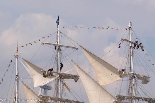 Sail_2015-1405