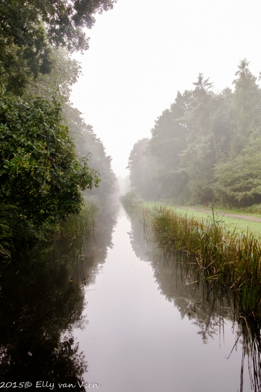 De mist lost langzaam op