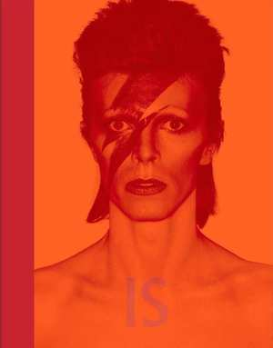 bowie-david-bowie-is-david-bowie-boek-cover-9789401604741