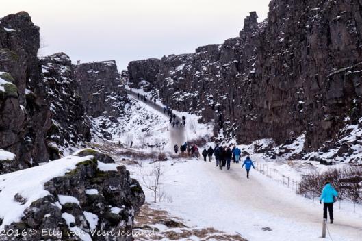 IJsland-Pingvellir-4530
