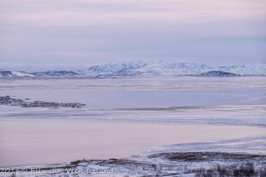IJsland-Pingvellir-4556
