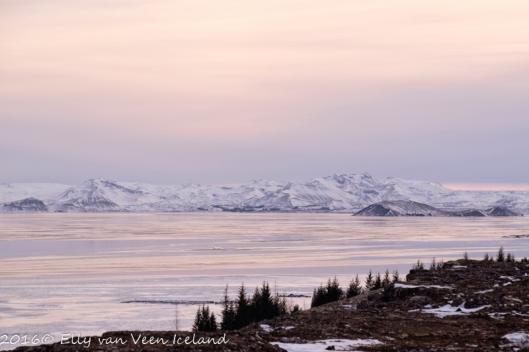 IJsland-Pingvellir-4558