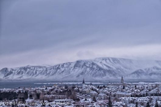 Reykjavik--5