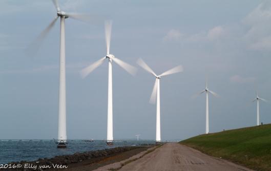 wind klein1-6155