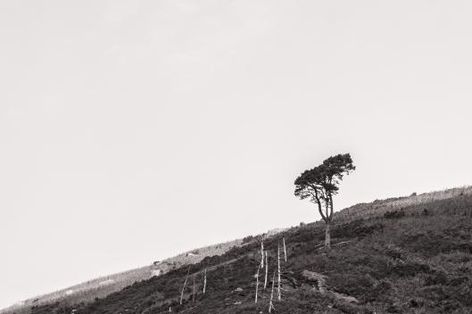 elly-minimalisme-2