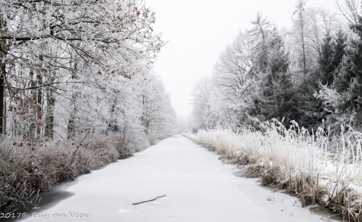 winter-1318