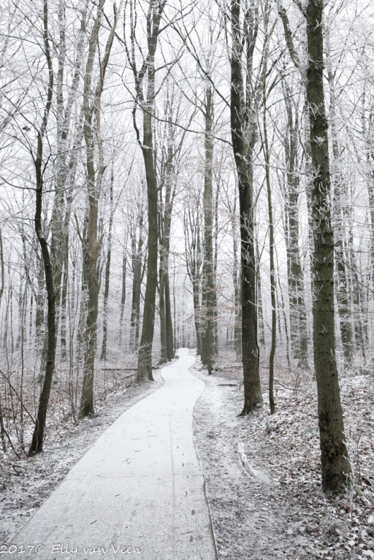 winter-1322