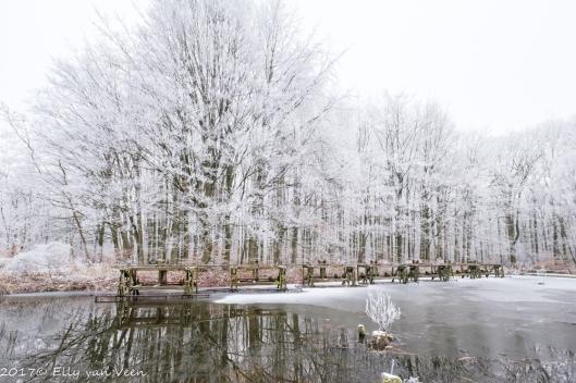 winter-1337