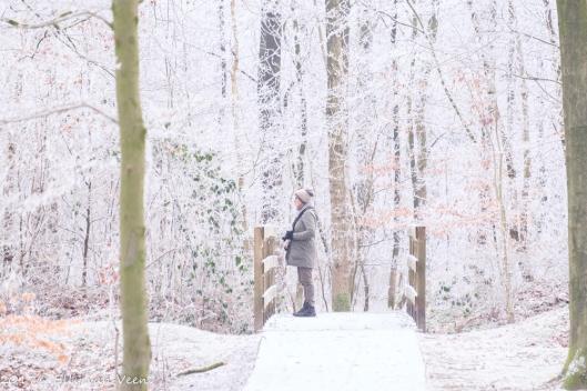 winter-1548