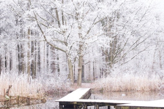 winter-1571